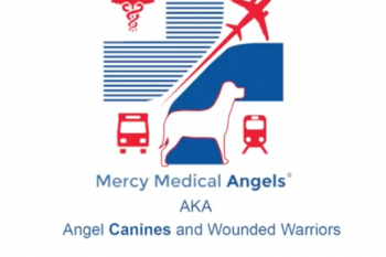 Angel Canines and Wounded Warriors Video